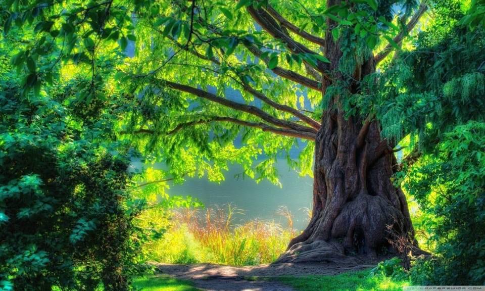 Healingsessioner healing kungsbacka onsala